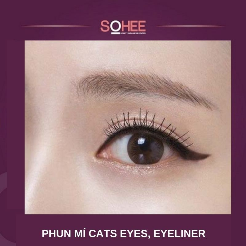 Phun mí Cats Eye, eyeliner