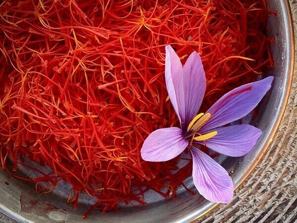 Bật mí cách uống nhụy hoa nghệ tây để giảm cân vèo vèo