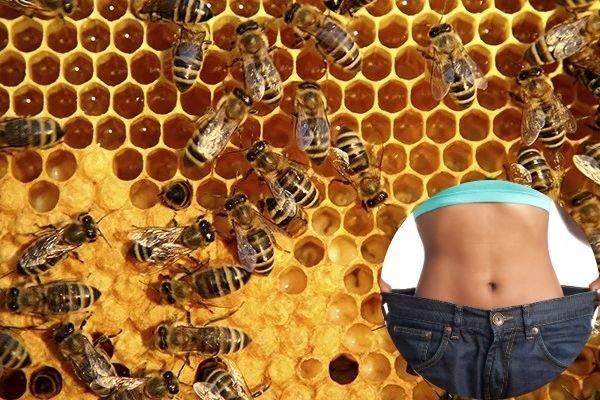 uống mật ong với gừng có giảm cân không, mật ong gừng giảm cân, Uống gừng với mật ong có giảm cân không, Giảm mỡ bụng bằng gừng và mật ong, Giảm cân bằng gừng trong 1 tuần, Kinh nghiệm giảm cân bằng gừng, Cách giảm mỡ bụng bằng gừng, Cách uống mật ong giảm cân, Tại sao uống mật ong lại giảm cân, Cách giảm cân bằng mật ong và nước ấm